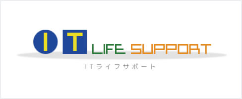 IT LIFE SUPPORT